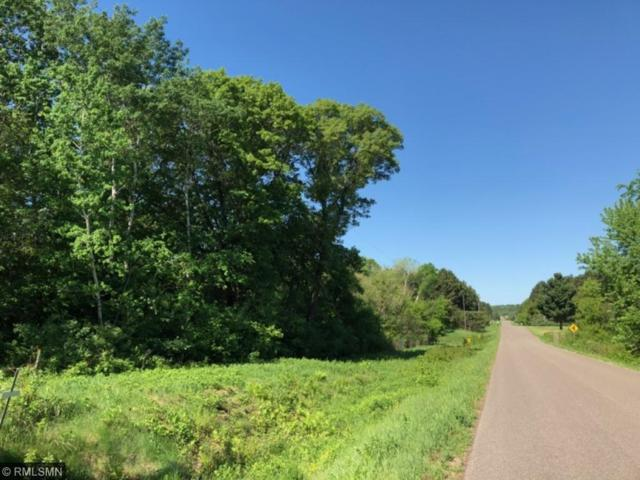 1359 Evergreen Drive, River Falls, WI 54022 (#4959370) :: The Hergenrother Group North Suburban