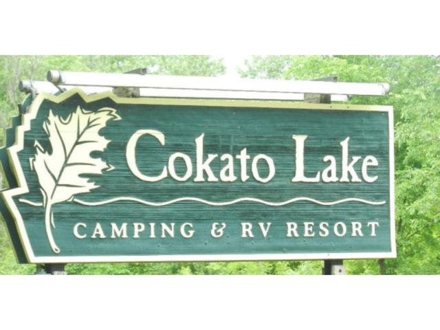 2945 County Road 4 #209 SW, Cokato, MN 55321 (#4961148) :: The Preferred Home Team