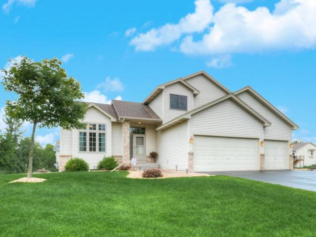 22524 Amy Lane, Rogers, MN 55374 (#4961702) :: House Hunters Minnesota- Keller Williams Classic Realty NW