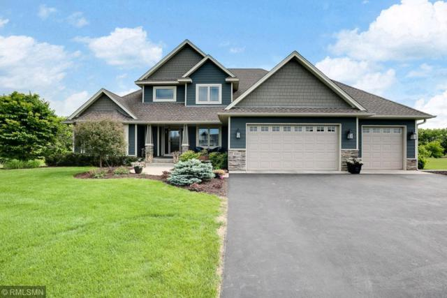 10261 245th Street, Chisago City, MN 55073 (#4962482) :: The Preferred Home Team