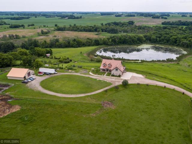 10749 750th Avenue SW, Cokato, MN 55321 (#4962564) :: Hergenrother Group