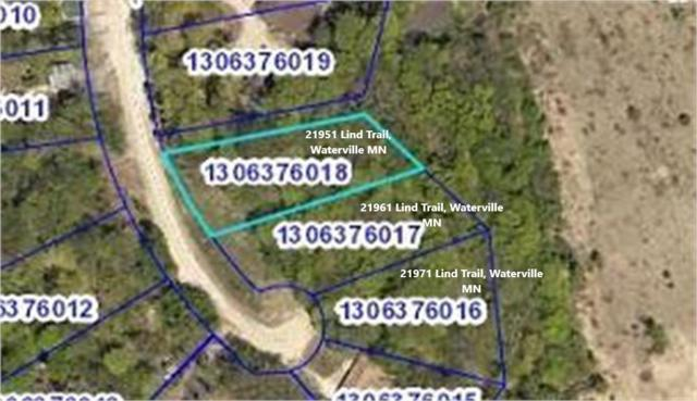 21951 Lind Trail, Waterville, MN 56096 (#4964552) :: Hergenrother Group