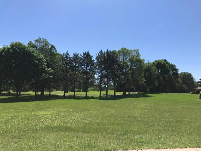 L18 B2 Parkview Drive, Becker, MN 55308 (#4966043) :: The Preferred Home Team