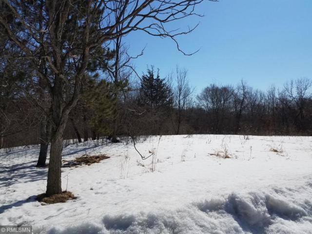 6700 Crackleberry Trail, Woodbury, MN 55129 (#4966909) :: The Preferred Home Team
