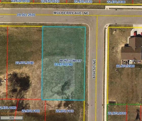 1018 Mulberry Avenue NE, Montgomery, MN 56069 (#4967829) :: House Hunters Minnesota- Keller Williams Classic Realty NW