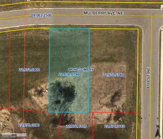 1016 Mulberry Avenue NE, Montgomery, MN 56069 (#4967842) :: House Hunters Minnesota- Keller Williams Classic Realty NW