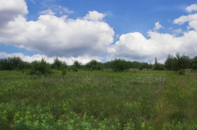 Lot 50 705th Avenue, Clifton Twp, WI 54022 (#4969103) :: The Sarenpa Team