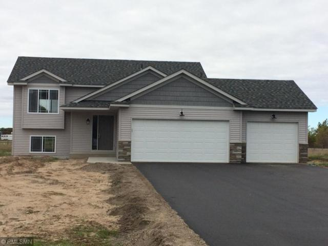 12203 282nd Avenue NW, Baldwin Twp, MN 55398 (#4969492) :: The Snyder Team