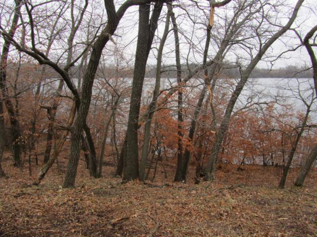 XXX 175th Ave (Lot 2), Glenwood Twp, MN 56334 (#4970111) :: Centric Homes Team