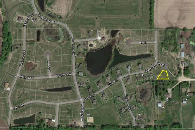 503 66th Court, Waverly, MN 55390 (#4970673) :: The Preferred Home Team