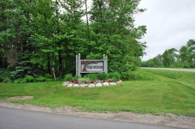 XXX Beaver Pond Drive, East Gull Lake, MN 56401 (#4970755) :: The Preferred Home Team
