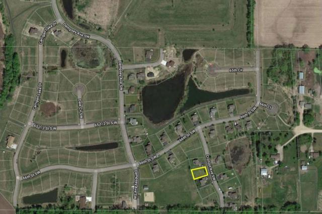 6607 Crofoot Avenue SW, Waverly, MN 55390 (#4970811) :: The Preferred Home Team