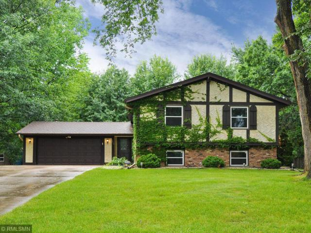 3215 Queensland Lane N, Plymouth, MN 55447 (#4971262) :: The Preferred Home Team