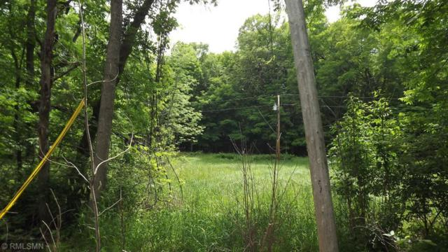 XXXXX Eaglewood Ct, Bay Lake Twp, MN 56444 (#4971805) :: The Preferred Home Team