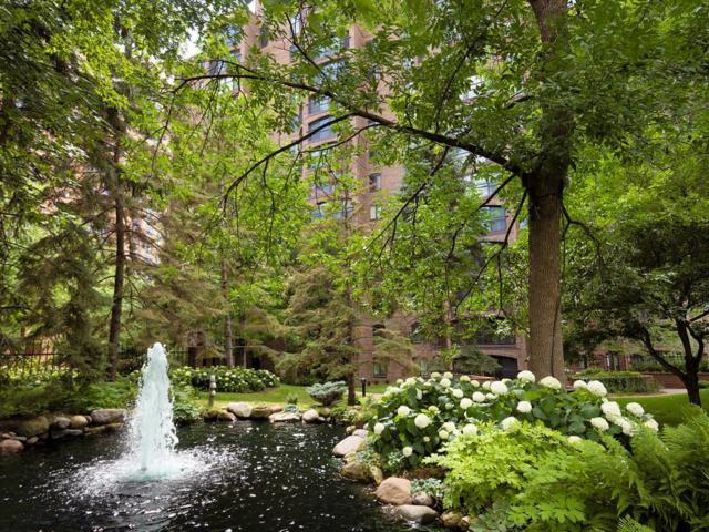 1235 Yale Place #1405, Minneapolis, MN 55403 (#4973879) :: The Sarenpa Team