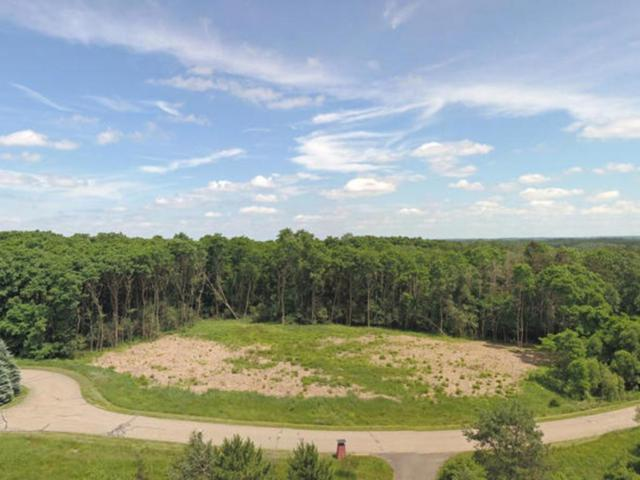 14460 15th Street Circle S, Afton, MN 55001 (#4974834) :: The Snyder Team
