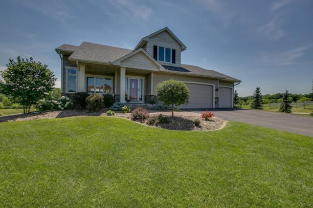 14991 203rd Avenue NW, Big Lake Twp, MN 55330 (#4976260) :: The Preferred Home Team