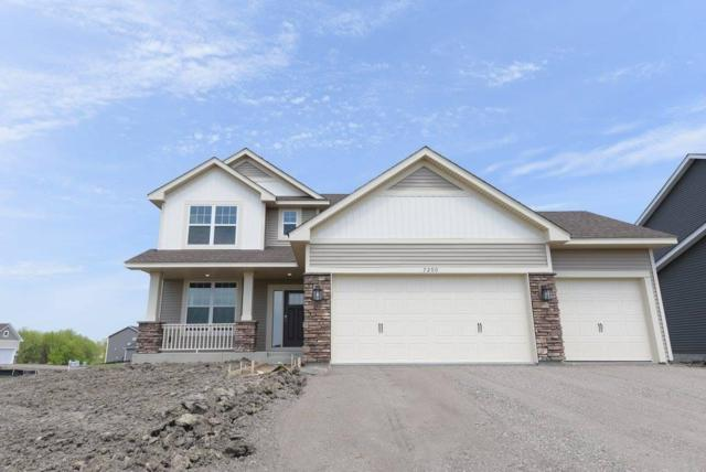 16042 Sapphire Street NW, Ramsey, MN 55303 (#4976950) :: The Preferred Home Team