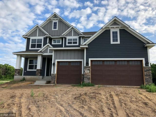3947 193rd Lane, Oak Grove, MN 55303 (#4978546) :: The Preferred Home Team