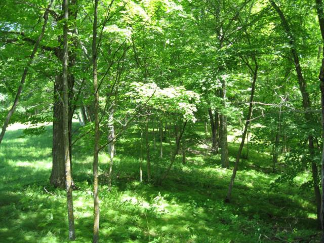 XXX Harbor Drive, Kathio Twp, MN 56450 (#4979042) :: The Preferred Home Team
