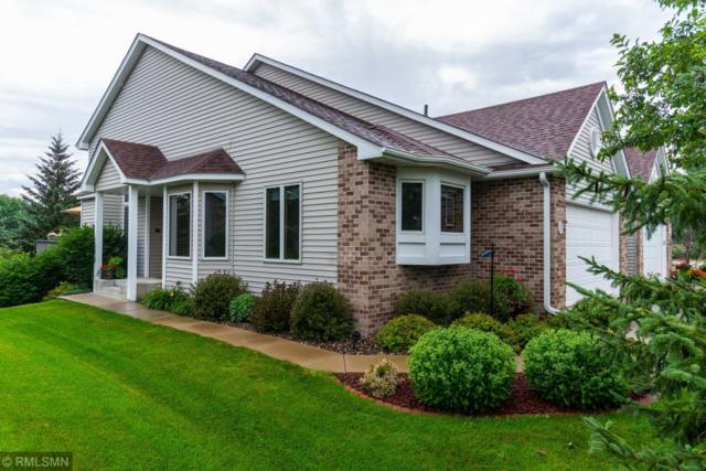 14276 Peninsula Point Drive, Savage, MN 55378 (#4979535) :: The Preferred Home Team