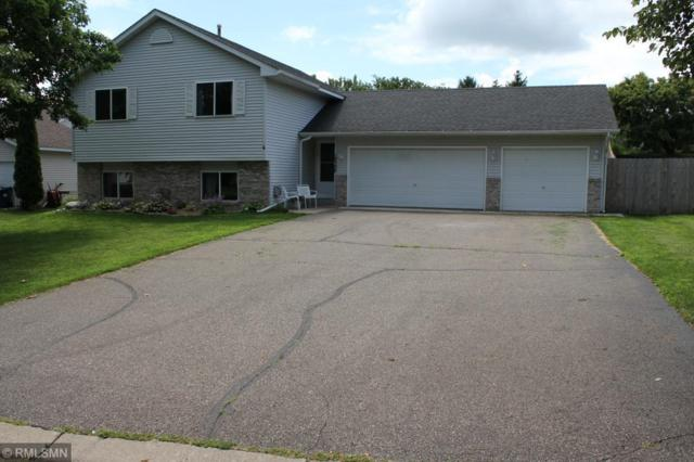19398 Evening Star Way, Farmington, MN 55024 (#4980600) :: The Snyder Team