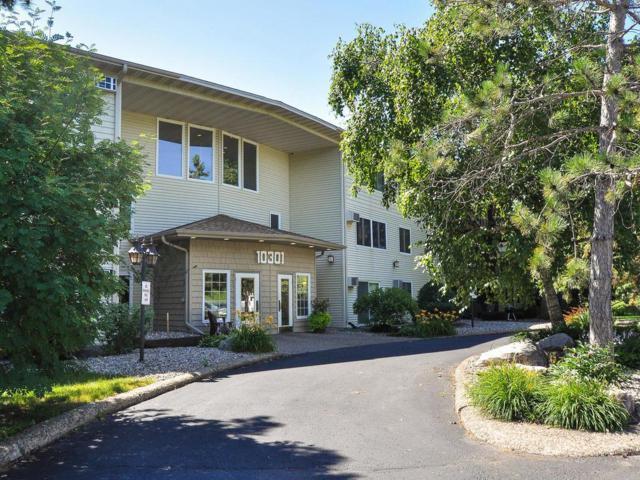 10301 Cedar Lake Road #303, Minnetonka, MN 55305 (#4981352) :: Team Winegarden