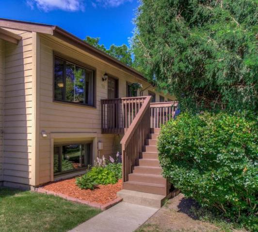 133 W Eagle Lake Drive, Maple Grove, MN 55369 (#4981368) :: Hergenrother Group