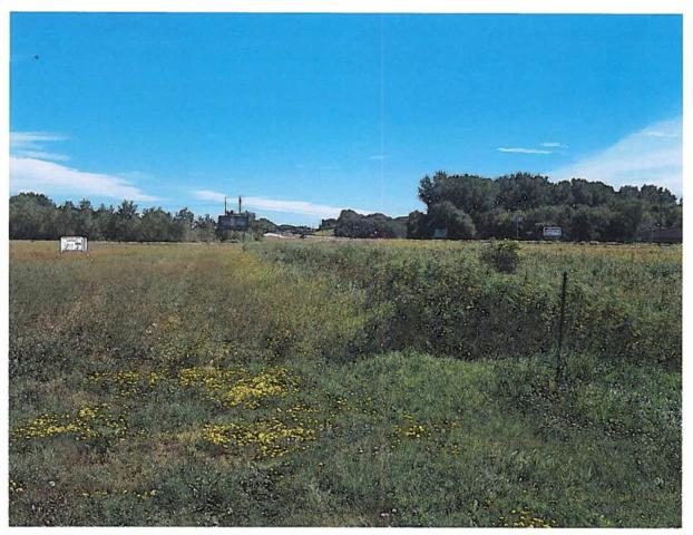 452 Great Oak Drive, Waite Park, MN 56387 (#4981584) :: The Sarenpa Team
