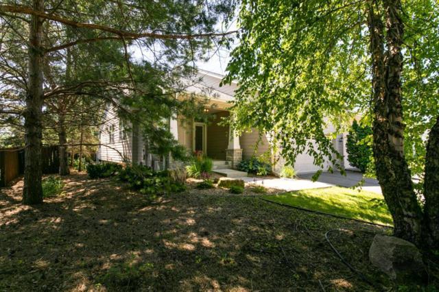 18925 Dorenkemper Place, Eden Prairie, MN 55347 (#4981646) :: Team Winegarden