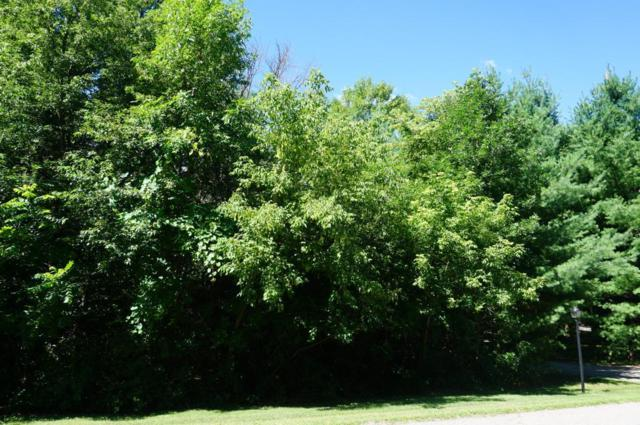 Lot 19 845th Street, Hager City, WI 54014 (#4981653) :: The Preferred Home Team