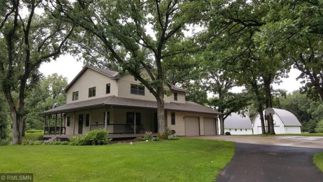 1435 200th Street, Clearwater, MN 55320 (#4982341) :: The Snyder Team