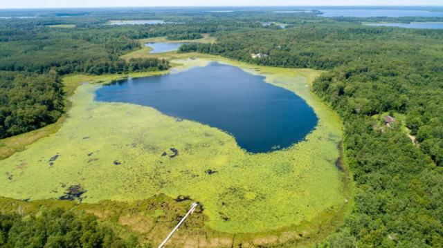 *** Mission Road SE, Ten Lake Twp, MN 56633 (#4982686) :: Centric Homes Team