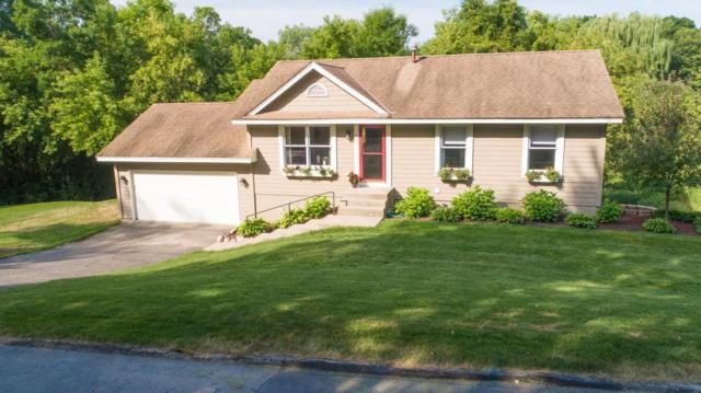 685 Carver Beach Road, Chanhassen, MN 55317 (#4986646) :: The Janetkhan Group