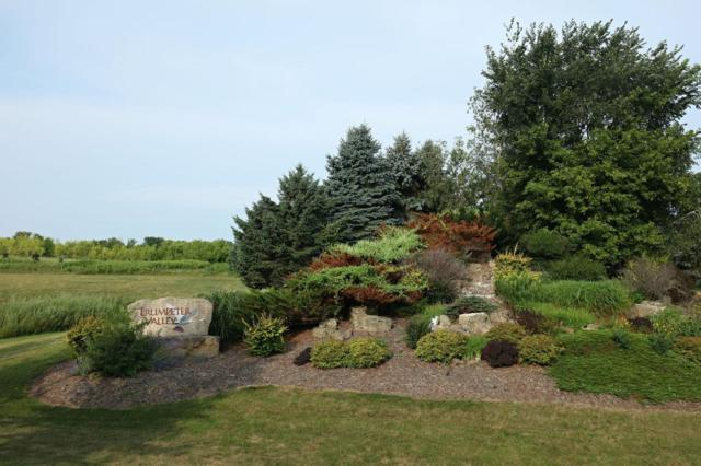 Lot 3 1130th Street, Oak Grove Twp, WI 54021 (#4989759) :: The Preferred Home Team