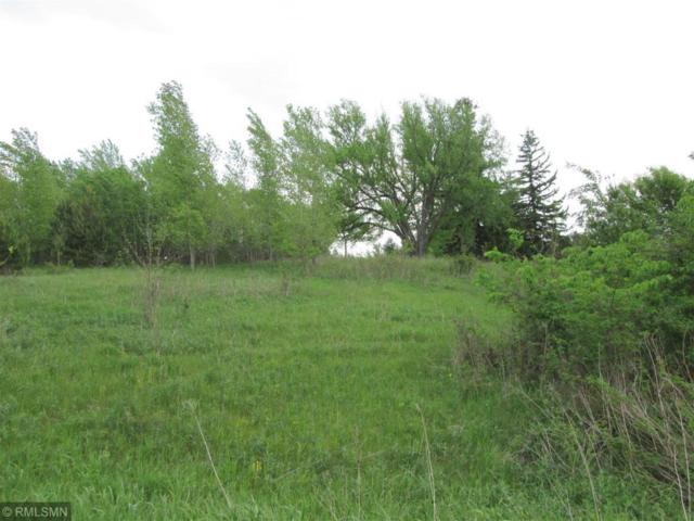 Lot 4 106th Avenue, Amery, WI 54001 (#4990301) :: The Preferred Home Team