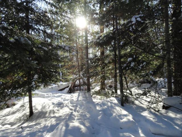 6047 Voyageurs Trail, Biwabik, MN 55708 (#4992488) :: The Preferred Home Team