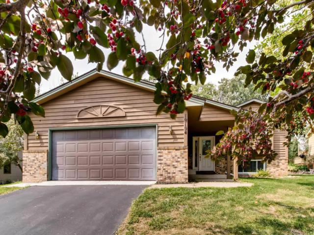 19194 Xavier Street NW, Elk River, MN 55330 (#4992872) :: Centric Homes Team