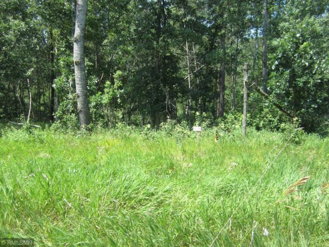 tbd #204, Park Rapids, MN 56470 (#4993964) :: Olsen Real Estate Group
