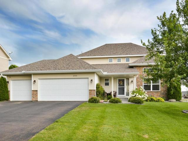 6500 Marlowe Avenue NE, Otsego, MN 55301 (#4994205) :: The Hergenrother Group North Suburban
