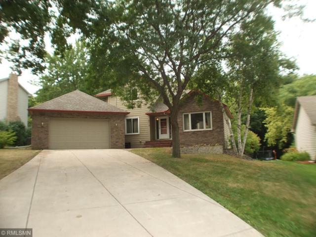 6715 Timber Crest Drive, Maple Grove, MN 55311 (#4994433) :: Centric Homes Team