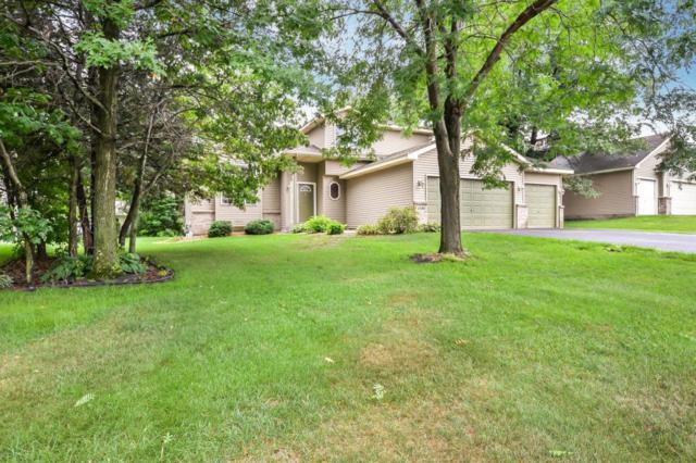 1486 155th Avenue NW, Andover, MN 55304 (#4998167) :: The Snyder Team