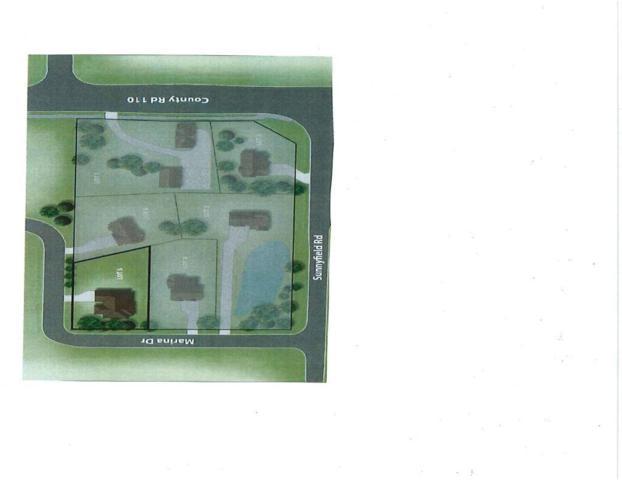 XXX Marina Lot 2 Drive, Minnetrista, MN 55364 (#4998263) :: The Sarenpa Team