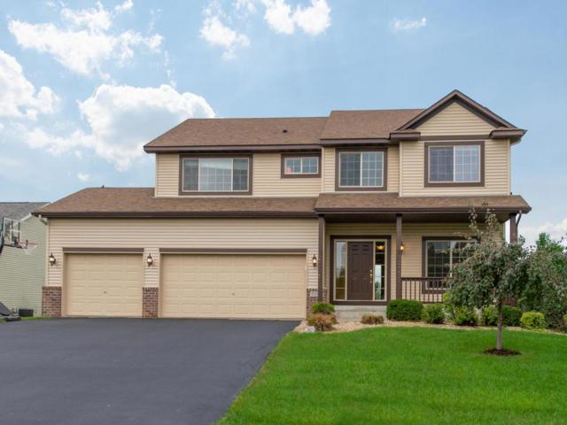 2532 River Bend Trail, Mayer, MN 55360 (#4999089) :: The Snyder Team