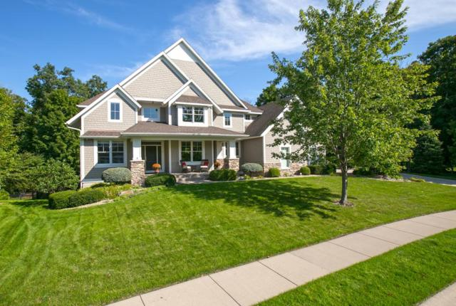 10141 Trails End Road, Chanhassen, MN 55317 (#5000801) :: The Preferred Home Team