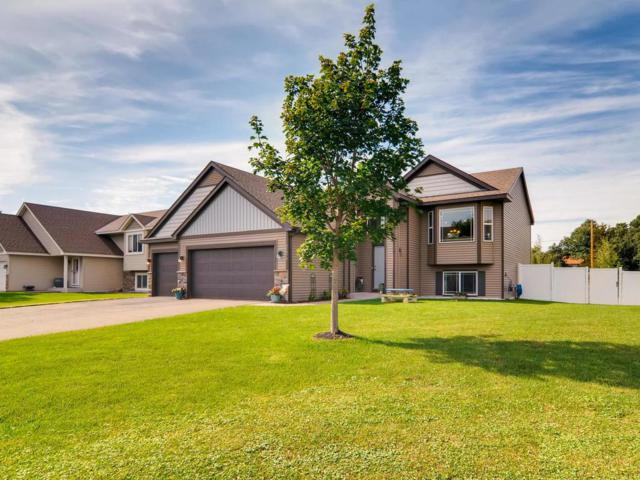 15378 Wintergreen Street NW, Andover, MN 55304 (#5001244) :: The Snyder Team