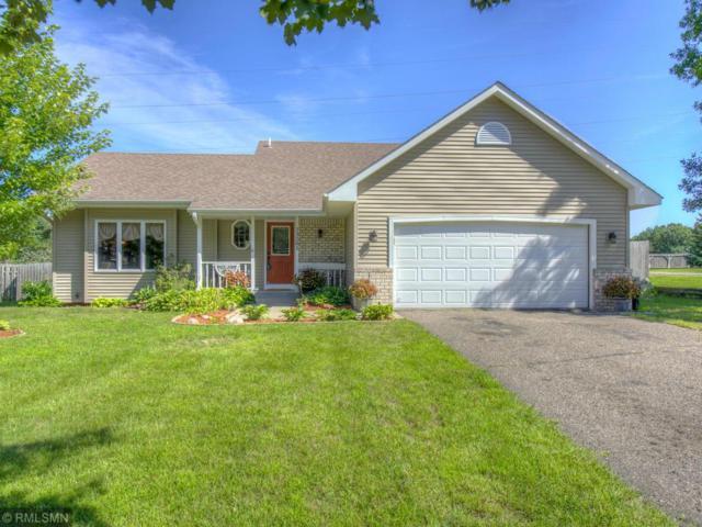 13201 Grouse Street NW, Coon Rapids, MN 55448 (#5001317) :: The Sarenpa Team