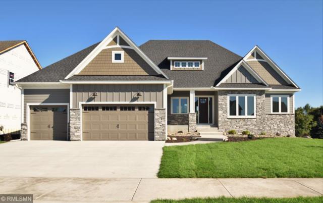 2989 132nd Ave Ne Avenue, Blaine, MN 55449 (#5001597) :: The Preferred Home Team