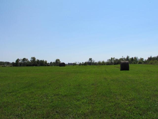 L1 B3 Knick Knack Road, Milaca, MN 56353 (#5002752) :: The Sarenpa Team