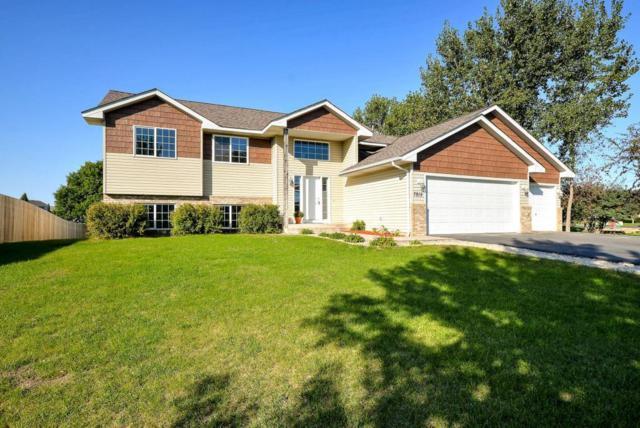 7815 Park Avenue NE, Otsego, MN 55330 (#5004398) :: House Hunters Minnesota- Keller Williams Classic Realty NW